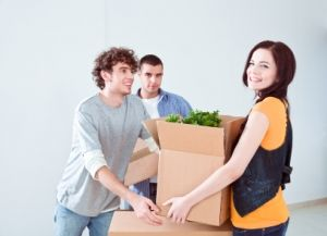 furniture removals  Brandon